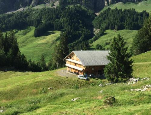 Alp Mittst Weid